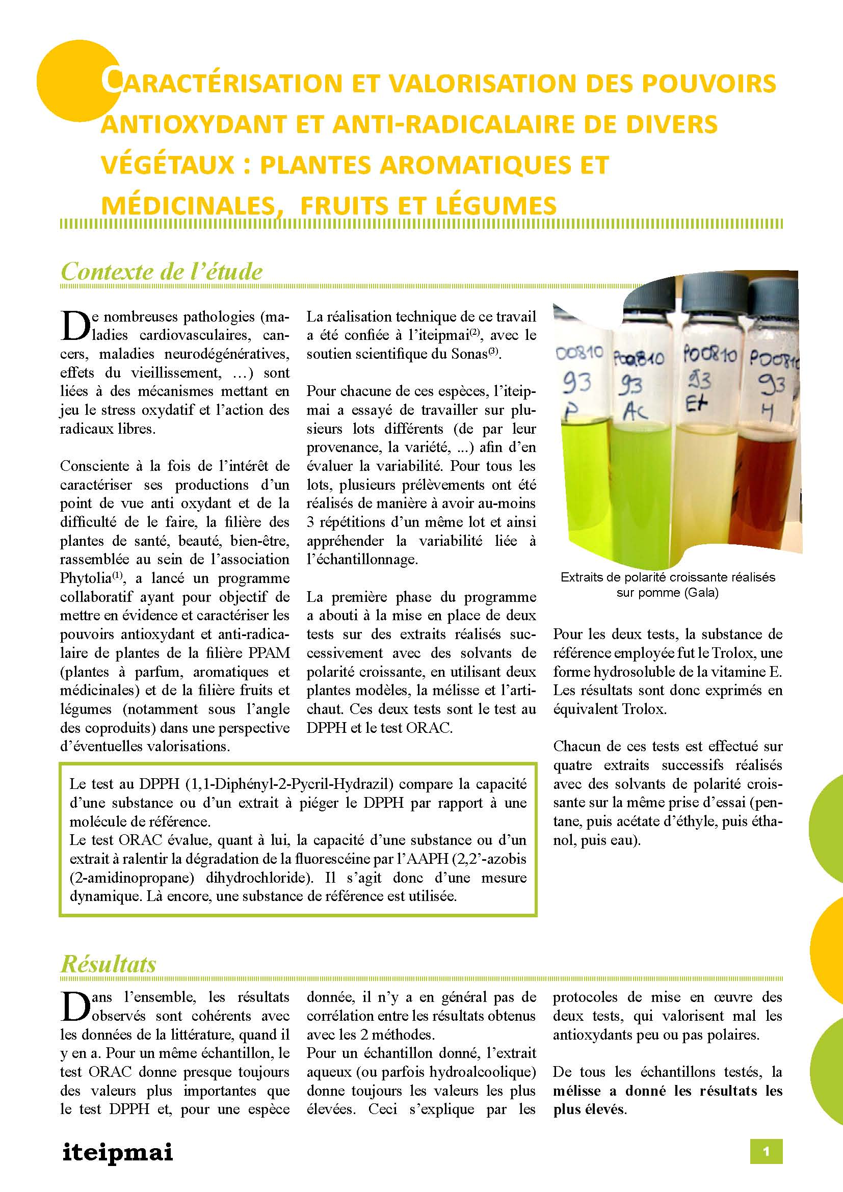 Pages de Article antioxydants